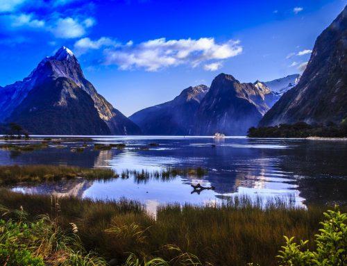 Neuseelands Erfolgsrezept: Wirtschaftliche Freiheit und niedrige Steuern