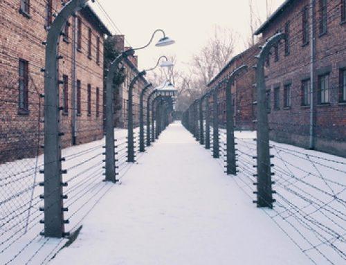 Rechtskollektivismus – Die andere Gefahr für die Freiheit: Ein Interview mit Jeffrey Tucker